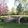 A beautiful spring view over the bridge of green #8 at Elmwood Country Club with pink blooming tree on the left side