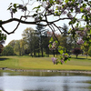 A view over the water of the 9th fairway at Elmwood Country Club