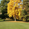 A fall day view from Soaring Eagles Golf Course